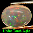 Ovaler Opal Multi Color 12x9.4x5.2mm 3.19ct